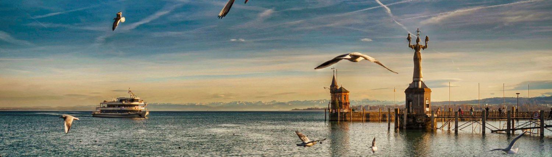 Ansicht des Konstanzer Hafens mit Blick auf Möwen, ein Schiff und die Imperia